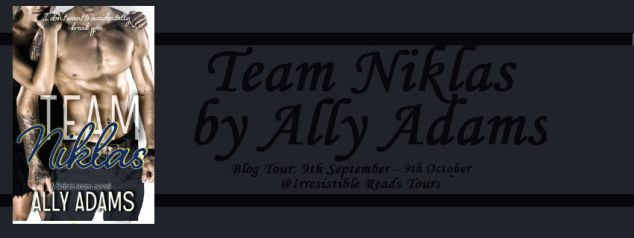 Banner - Team Niklas by Ally Adams